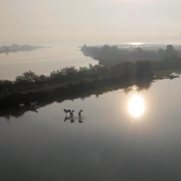 riprese_aeree_drone_paesaggi.jpg